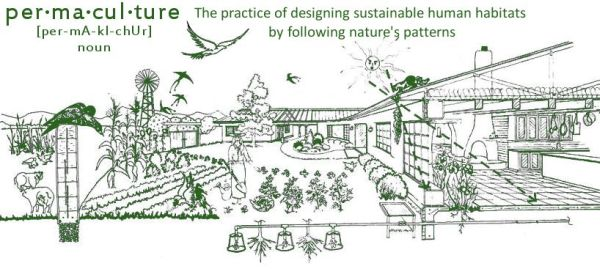 Illustration of permaculture and urban farming...